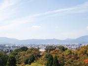 Kyoto, Japan | Anna Port Photography1