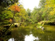 Kyoto, Japan | Anna Port Photography8