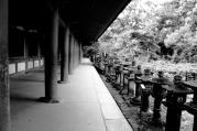 Nara, Japan | Anna Port Photography15