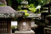 Nara, Japan | Anna Port Photography18