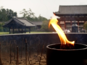 Nara, Japan | Anna Port Photography21