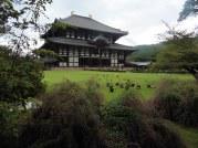Nara, Japan | Anna Port Photography25