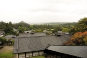 Nara, Japan | Descubriendo el mundo con Anna