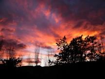 Sunset | Anna Port Photography6