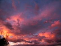 Sunset | Anna Port Photography7