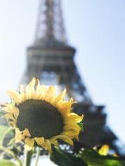 Paris | Anna Port Photography10
