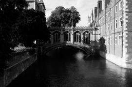 Cambridge, UK | Anna Port Photography22