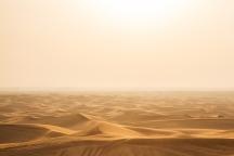 Desert Al Ain   Anna Port Photography1
