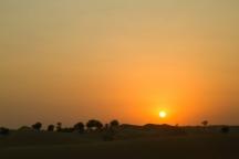 Desert Al Ain | Anna Port Photography10