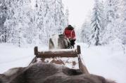 Lapland | Anna Port Photography10