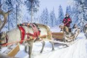 Lapland | Anna Port Photography9
