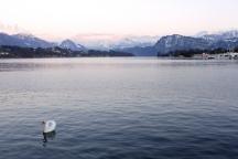 Lucerna, Suiza   Anna Port Photography6