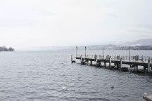Zurich, Suiza   Anna Port Photography5